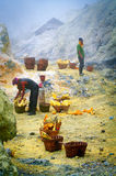 Workers extracting sulfur inside crater in Ijen Stock Images