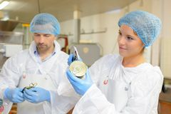 Workers in factory food processing stock image