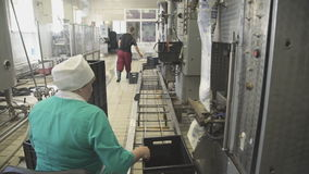 Workers at factory for production and packaging of dairy products. Pouring milk in plastic bags, sealing of them, laying in boxes for transport and storage stock footage