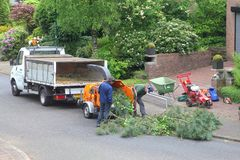 Workers are felling a tree and use the wood chipper, Netherlands  Stock Photos