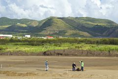 Workers in the fields in St Kitts Stock Image