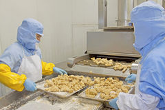 workers in food processing production line Royalty Free Stock Photo