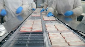 Workers in gloves put food into plastic containers at a factory.