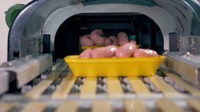 Workers place trays with sausages on a conveyor. stock footage
