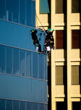 Workers hanging from a building Royalty Free Stock Photo