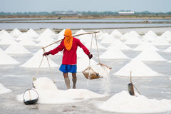 Salt pan harvest Royalty Free Stock Photos