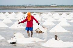 Salt pan harvest Royalty Free Stock Photos