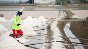 Salt pan harvest Royalty Free Stock Image