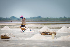 Salt pan harvest Stock Photo