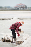 Salt pan harvest Royalty Free Stock Images