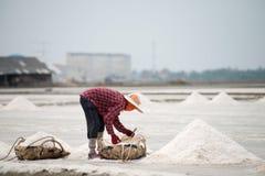 Salt pan harvest Royalty Free Stock Image