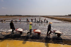 Workers harvesting salt in salt fields at Binh Thuan, Vietnam Stock Photo