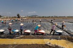 Workers harvesting salt in salt fields at Binh Thuan, Vietnam Royalty Free Stock Photo