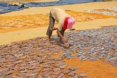 Free Workers In Negombo Fish Market, Sri Lanka Stock Photography - 94122082