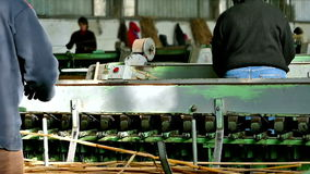 Workers in industrial production stock video