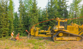 Workers laying fibre optic cable in the northwest territories Stock Photography