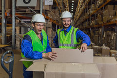 Workers looking inside boxes royalty free stock images