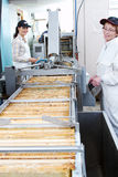 Workers monitoring movement of honey frames. Workers monitoring machine that moves honey frames royalty free stock image
