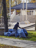 The workers of the municipality collect leaves in the park. Women social workers removed the foliage. Royalty Free Stock Photos