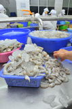 Workers are peeling fresh raw shrimps in a seafood factory in Quy Nhon city, Vietnam Royalty Free Stock Photo