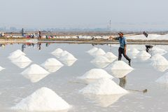 Workers and piles of salt at the Hon Khoi salt fields in Nha Tra Royalty Free Stock Images