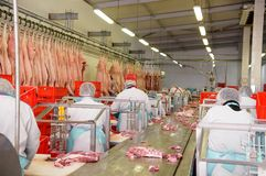 Workers of pork meat manufacturing Stock Photos