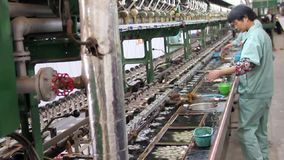 Workers preparing cocoons to use the silk material in the textile production, Shanghai, China stock footage