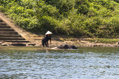 Workers on river in Vietnam Stock Photography