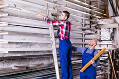 Workers searching for profiles on rack Stock Photography