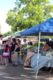 Workers and Shoppers at Outdoor Farmer�s Market Royalty Free Stock Images