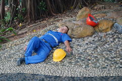 Workers are sleeping under the tree. Stock Photos