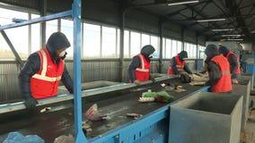 Workers sort garbage. Processing plant debris stock video