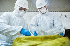 Workers Sorting Trash on Conveyor Belt. Portrait of two workers wearing biohazard suits sorting recyclable plastic and cardboard on conveyor belt at waste stock photos