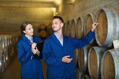 Workers standing with clipboard and labeling woods in cellar. Portrait of  positive men and women winery workers standing with clipboard and labeling woods in Royalty Free Stock Images