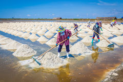 The workers are sweeping the raw salt Royalty Free Stock Photos