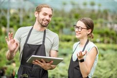 Workers with tablet in the greenhouse. Couple of workers in uniform using digital tablet working with plants in the greenhouse of the plant shop Royalty Free Stock Photo