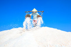 Workers transporting salt from the fields Royalty Free Stock Photo