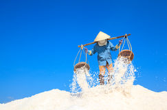 Workers transporting salt from the fields Stock Photo