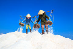 Workers transporting salt from the fields Royalty Free Stock Images