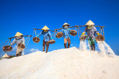 Workers transporting salt from the fields Royalty Free Stock Photography