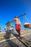 Workers transporting salt from the fields Royalty Free Stock Image