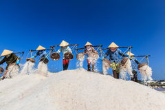 Workers transporting salt from the fields Royalty Free Stock Photos