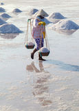Workers transporting salt from the fields Stock Image
