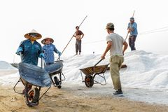 Workers unload salt at the Hon Khoi salt fields in Nha Trang, Vi Royalty Free Stock Photo
