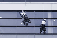 Workers washing windows of the modern building royalty free stock images