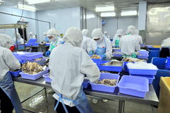 Workers are working hard in a seafood factory in Ho Chi Minh city, Vietnam Royalty Free Stock Photography