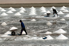 Workers are working at a salt farm in Thailand. Stock Image