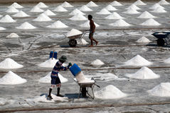 Workers are working at a salt farm in Thailand. Royalty Free Stock Images