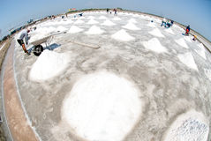 Workers are working at a salt farm in Thailand. SAMUTSONGKHRAM,THAILAND - FEB 18: Unidentified workers carrying salt at the salt farm on February 18,2014 in royalty free stock image