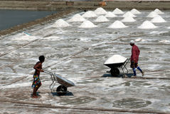 Workers are working at a salt farm in Thailand. Stock Photo